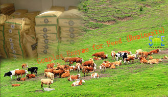 China Efficient Complex Enzyme Feed Additive Powdered Nutrition In Ruminants Szym-nutriRUM supplier