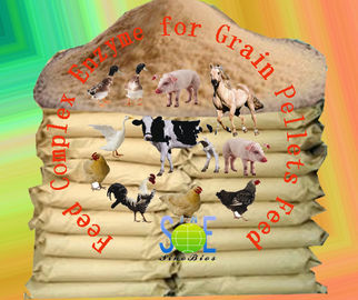 China Grain Pellets Complex Enzyme Feed Additive Fregulate Immunity Szym-nutriPEL supplier