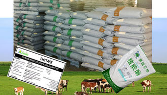 China Livestock Feed Additives Phytase Powder Enzymes For Poultry Feed Szym-PHY10P supplier
