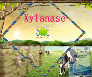 China 150,000u/g Xylanase Powder Enzyme Feed Additive Szym-XY150FE with Normal fermentation odor supplier