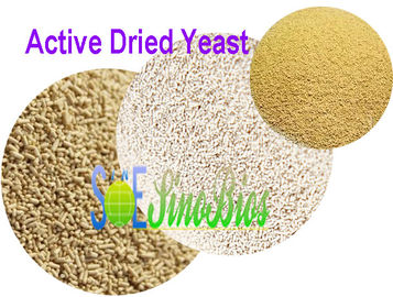 China 2 Billion cfu/g Granulated Dry Active Yeast Livestock Feed Additives SYE-AD2BI supplier