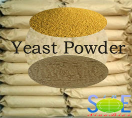 China Powdered Yeast Animal Feed 4.5-6.5 pH For Supplying Protein SYE-PO55 supplier