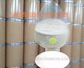 China Animal Nutrition Supplements Probiotic Feed Additives Powdered Lactobacillus Acidophilus SEM-LA50BI supplier