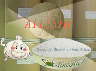 China White Feeding Garlicin Powder Purity 30% Min. SBC-ALL30 Little sulfide Content supplier