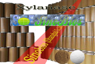 China Healthy Food Additives Xylanase Enzyme Powder for Baking Szym-XY10BA supplier