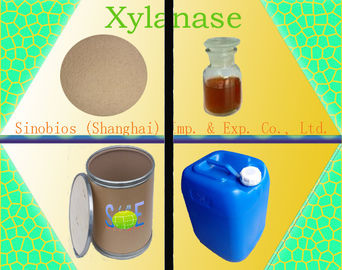 China Food Grade Enzyme Xylanase Liquid for Beer Brewing Yeast - Szym-XY50LBE(YE) supplier
