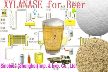 China Healthy Food Additives Trichoderma Reesei Light Yellow Xylanase Powder Szym-XY100BE(TR) supplier