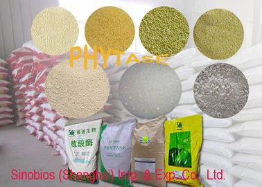 China White Granule Type Phytase 5000 u/g Feed Additives For Animals Szym-PHY5G supplier