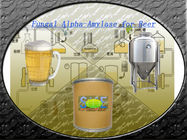 China 100,000U/G Food Grade Fungal Alpha Amylase Powder For Beer Brewing SINOzym-FAA100BE factory