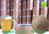 China Beer Brewery Fungal Food Grade Alpha Amylase Enzyme SINOzym-FAA50BE factory