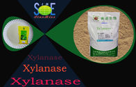 China Food Grade Enzyme Xylanase Additives For Bread Bakery 50,000u/g Szym-XY50BA factory