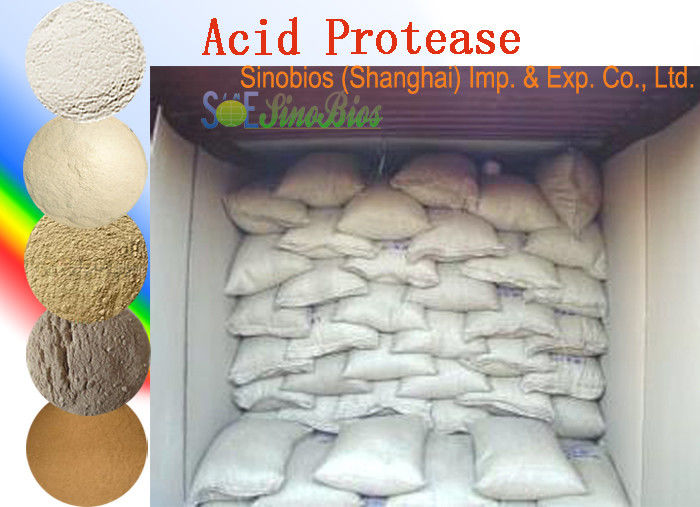 Food Grade Acid Protease Enzyme Powder For Ethanol Activity