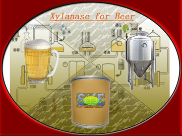 China Beer Brewing Xylanase Powder Fermented from Trichoderma Reesei Szym-XY150BE(TR) distributor
