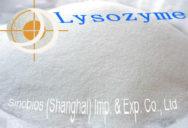 China Poultry Feed Supplement / Lysozyme Enzyme Feed Additive 500u/mg Szym-LYSD5FE factory
